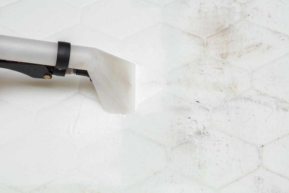 mattress cleaning shoalhaven